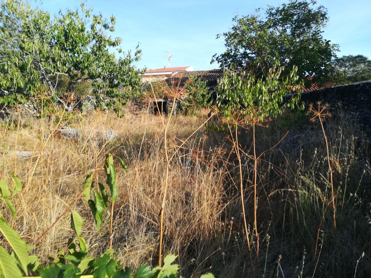 CASA DE PUEBLO CON PATIO EN CASAFRANCA (REF: 203) - foto 3 8408731d-6bf1-4233-b446-81dbb990c8e7.jpg